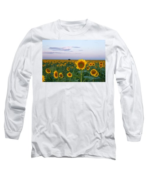 Sunflowers At Sunrise Long Sleeve T-Shirt by Ronda Kimbrow