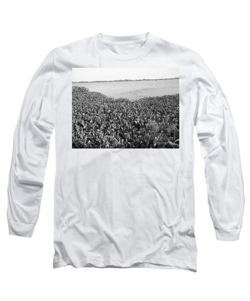 Long Sleeve T-Shirt featuring the photograph Swamp Hyacinths Water Lillies Black And White by Joseph Baril