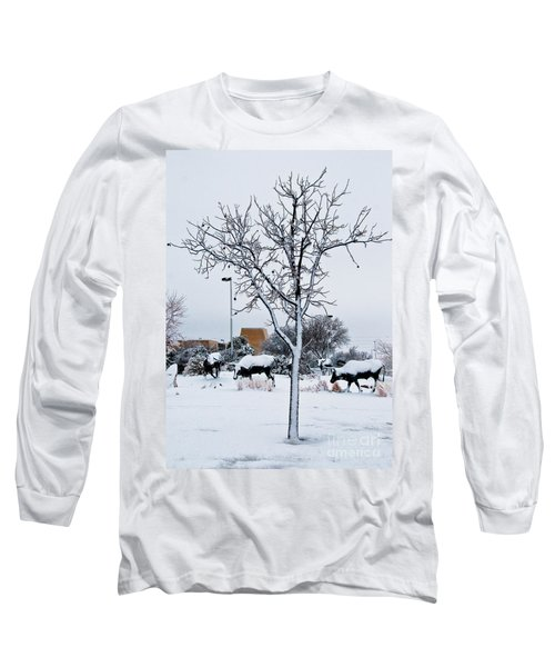 Long Sleeve T-Shirt featuring the photograph Heritage Grounds by Mae Wertz