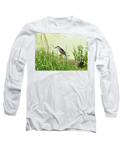The Black-crowned Night Heron Long Sleeve T-Shirt by Verana Stark