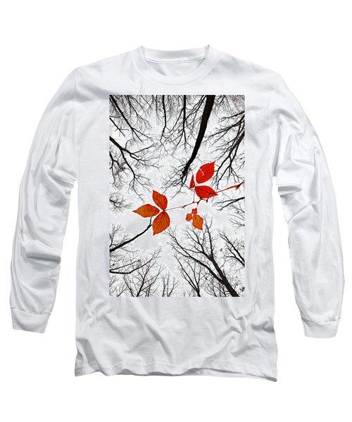 The Last Leaves Of November Long Sleeve T-Shirt