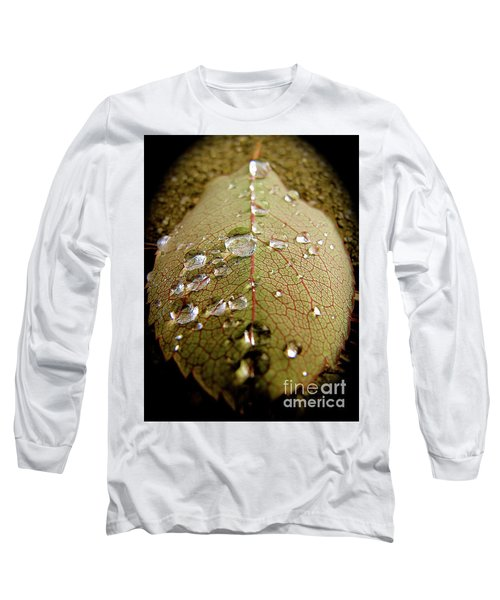 The Leaf After Rain Long Sleeve T-Shirt by CML Brown