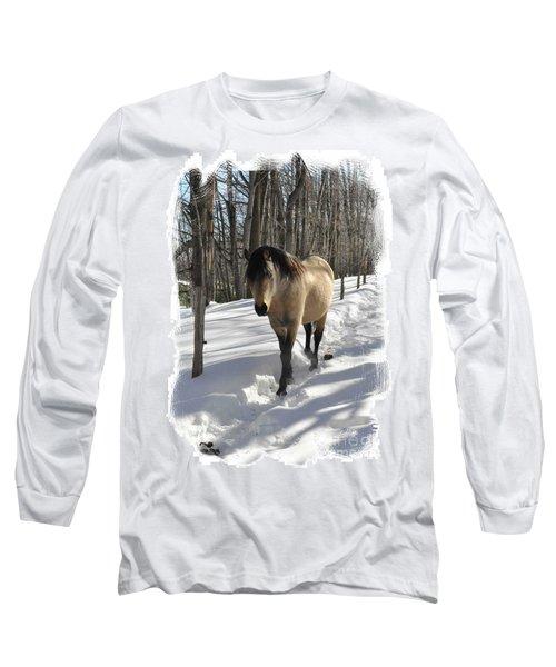 The Paso Fino Stallion Named Brio Long Sleeve T-Shirt