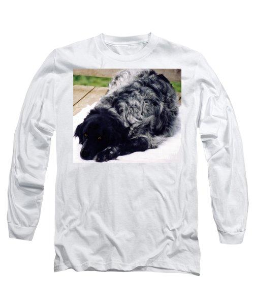 The Shaggy Dog Named Shaddy Long Sleeve T-Shirt
