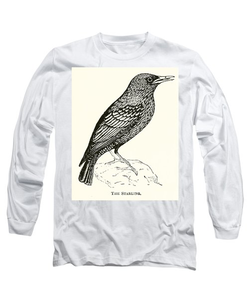 The Starling Long Sleeve T-Shirt by English School