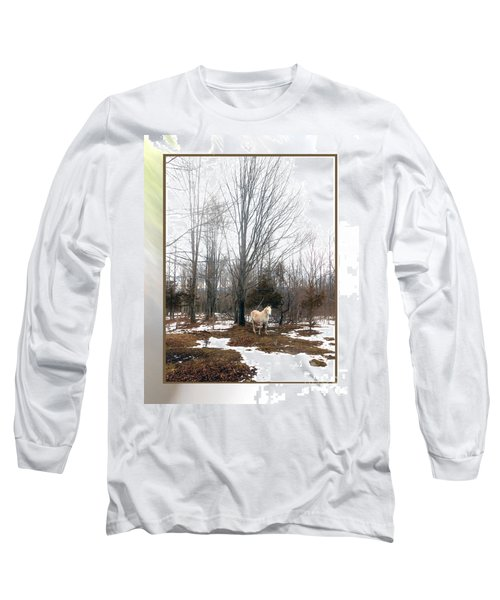 The White Stallion On A Snowless  Mound Long Sleeve T-Shirt by Patricia Keller