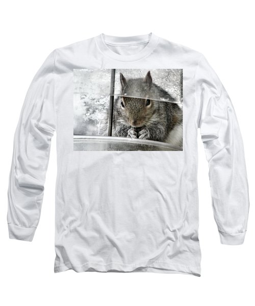 Thief In The Birdfeeder Long Sleeve T-Shirt