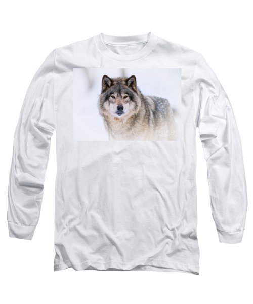 Timber Wolf Pictures 256 Long Sleeve T-Shirt