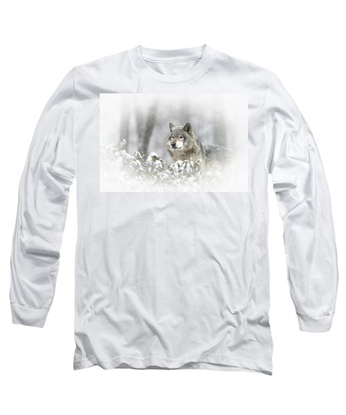 Timber Wolf Pictures 279 Long Sleeve T-Shirt