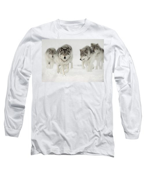 Timber Wolf Pictures 65 Long Sleeve T-Shirt