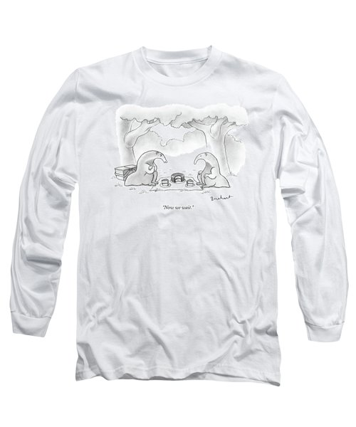 Two Anteaters On A Picnic Wait For Ants To Come Long Sleeve T-Shirt