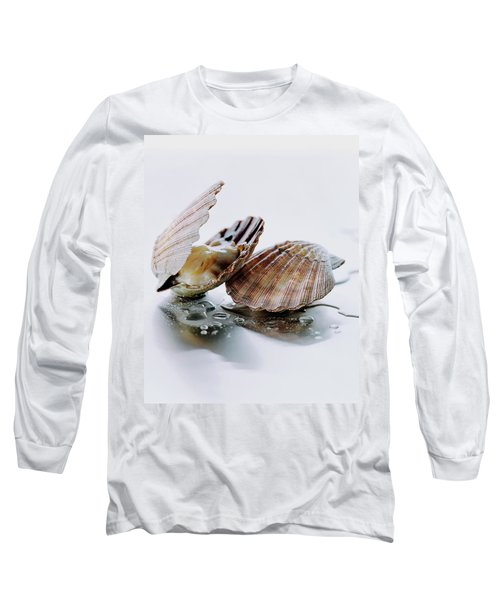 Two Scallops Long Sleeve T-Shirt