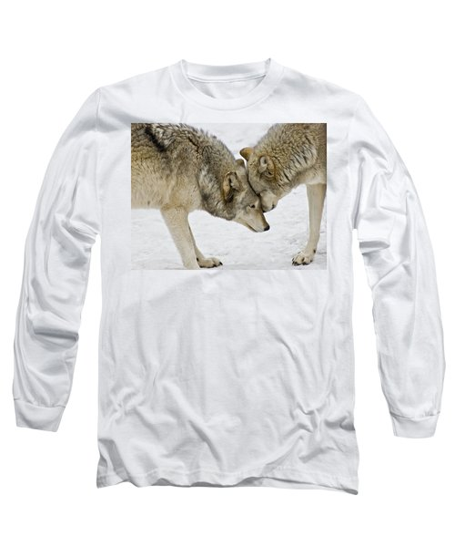 Two Wolves In  A Staredown Long Sleeve T-Shirt by Gary Slawsky