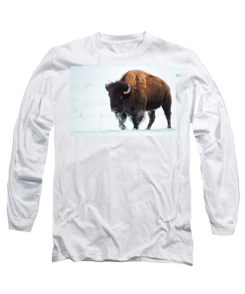 Waiting For Spring Long Sleeve T-Shirt by Jim Garrison