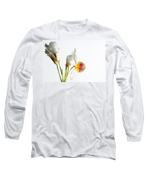 White Sparmannia Africana Plant. Long Sleeve T-Shirt