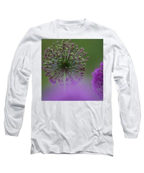 Wild Onion Long Sleeve T-Shirt by Heiko Koehrer-Wagner