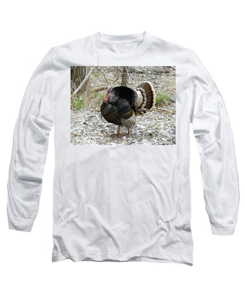 Wild Turkey Mnt Zion Ut Long Sleeve T-Shirt