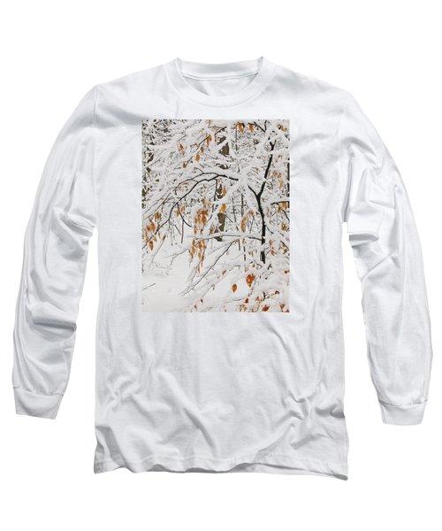 Winter Branches Long Sleeve T-Shirt by Ann Horn