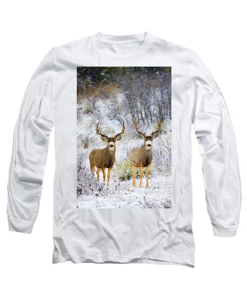 Winter Bucks Long Sleeve T-Shirt