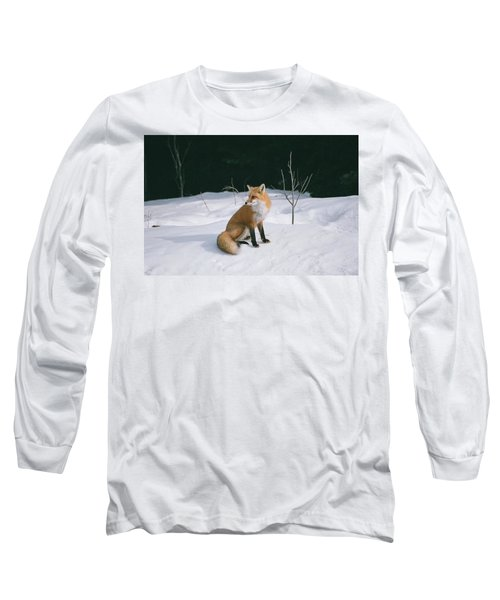 Winter Fox Long Sleeve T-Shirt by David Porteus