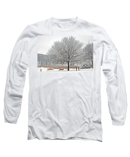 Long Sleeve T-Shirt featuring the photograph Winter Park by Aimee L Maher Photography and Art Visit ALMGallerydotcom