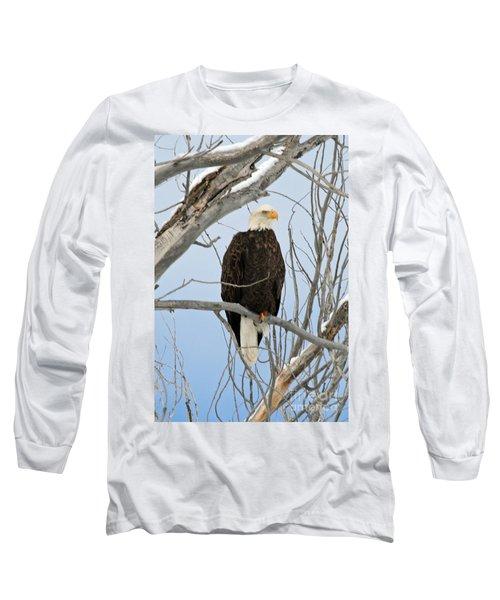 Winter Perch Long Sleeve T-Shirt by Bob Hislop