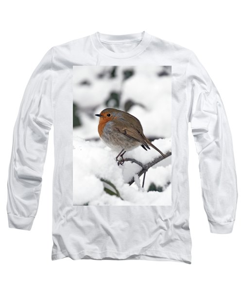 Winter Robin Long Sleeve T-Shirt
