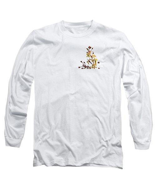 Winter Rose Long Sleeve T-Shirt by Linda Shafer