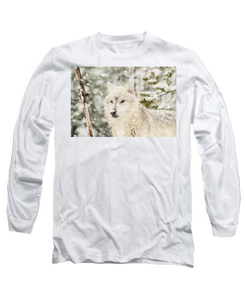 Wolf In Snow Long Sleeve T-Shirt