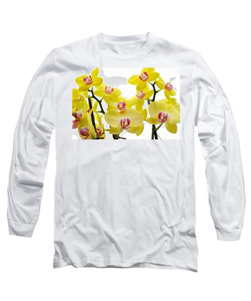 Yellow Beauties Long Sleeve T-Shirt by Tine Nordbred