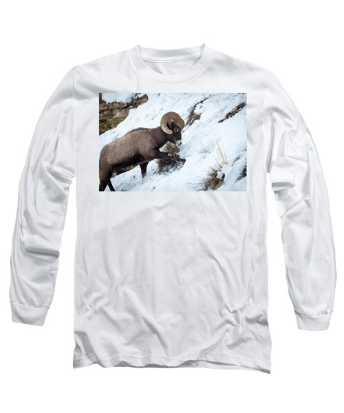 Yellowstone Bighorn Long Sleeve T-Shirt