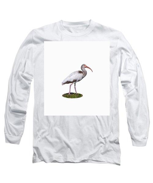 Long Sleeve T-Shirt featuring the photograph Young Ibis Gazing Upwards by John M Bailey