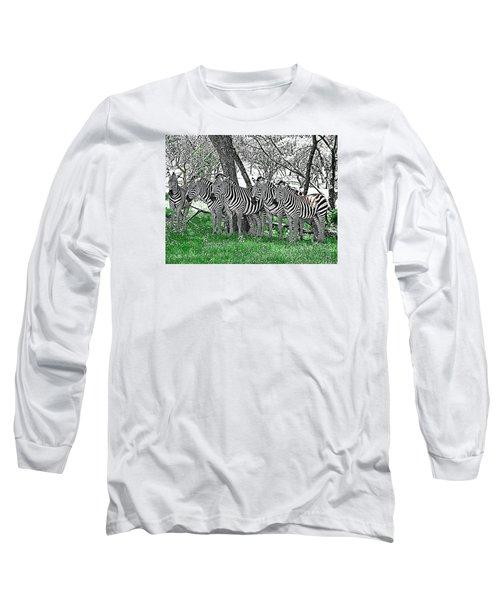 Zebras Long Sleeve T-Shirt by Kathy Churchman