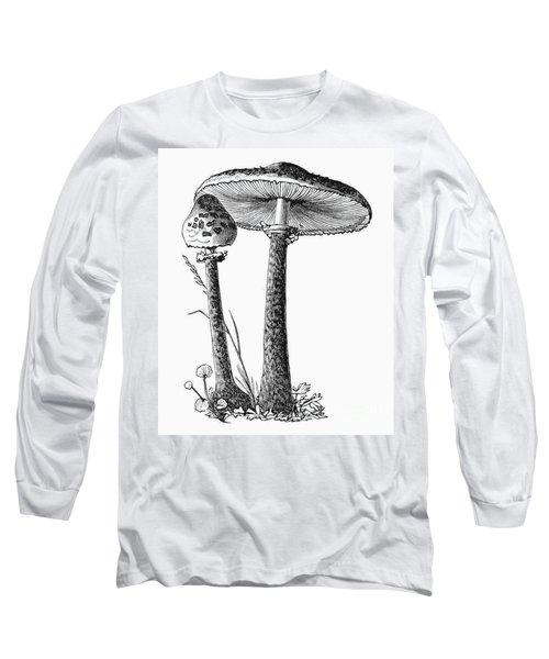 Botany: Mushroom Long Sleeve T-Shirt