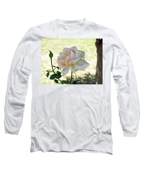 Long Sleeve T-Shirt featuring the photograph A Beautiful White And Light Pink Rose Along With A Bud by Ashish Agarwal