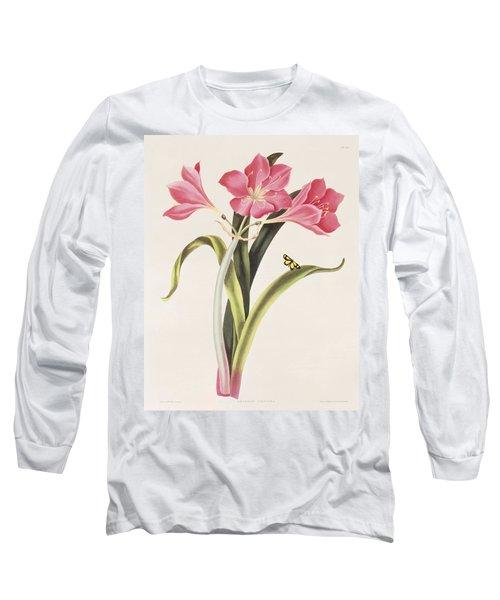 Amaryllis Purpurea Long Sleeve T-Shirt