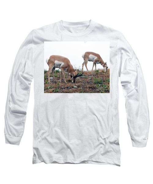 Long Sleeve T-Shirt featuring the photograph Antelopes Grazing by Art Whitton