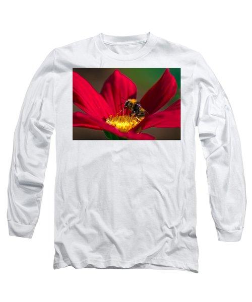 Beebot Long Sleeve T-Shirt