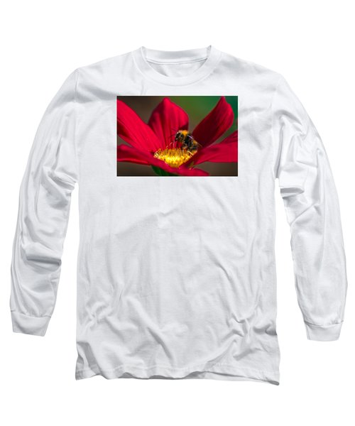 Long Sleeve T-Shirt featuring the photograph Beebot by Stwayne Keubrick