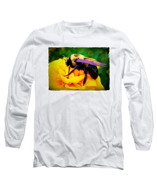Bumblebee With Bokeh Long Sleeve T-Shirt by Judi Bagwell