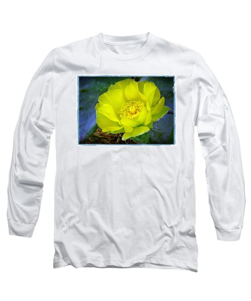 Cactus Flower Long Sleeve T-Shirt by Judi Bagwell