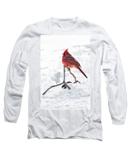 Long Sleeve T-Shirt featuring the photograph Cardinal's Song by Tamyra Ayles