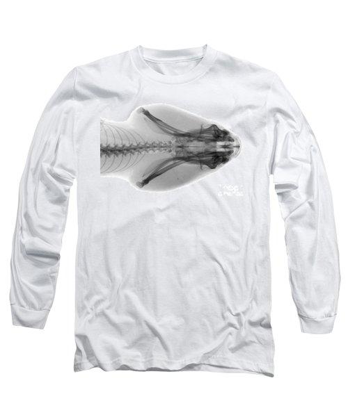 Eastern Diamondback Rattlesnake Head Long Sleeve T-Shirt by Ted Kinsman