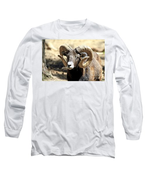 European Big Horn - Mouflon Ram Long Sleeve T-Shirt
