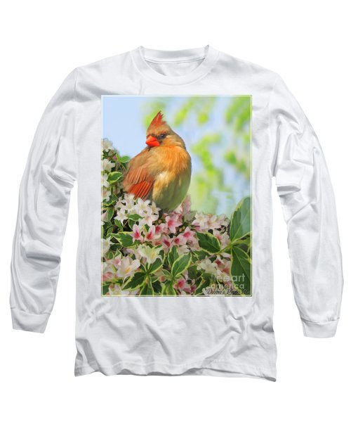 Long Sleeve T-Shirt featuring the photograph Female Cardnial In Wegia Digital Art by Debbie Portwood