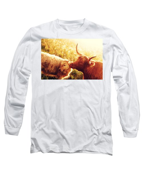 Fenella With Her Daughter. Highland Cows. Scotland Long Sleeve T-Shirt by Jenny Rainbow