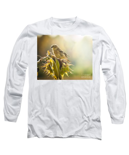 Long Sleeve T-Shirt featuring the photograph Finch Aglow by Cheryl Baxter