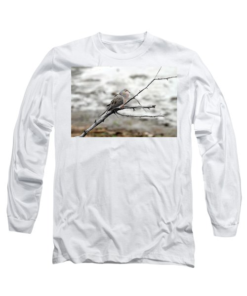 Long Sleeve T-Shirt featuring the photograph Good Morning Dove by Elizabeth Winter