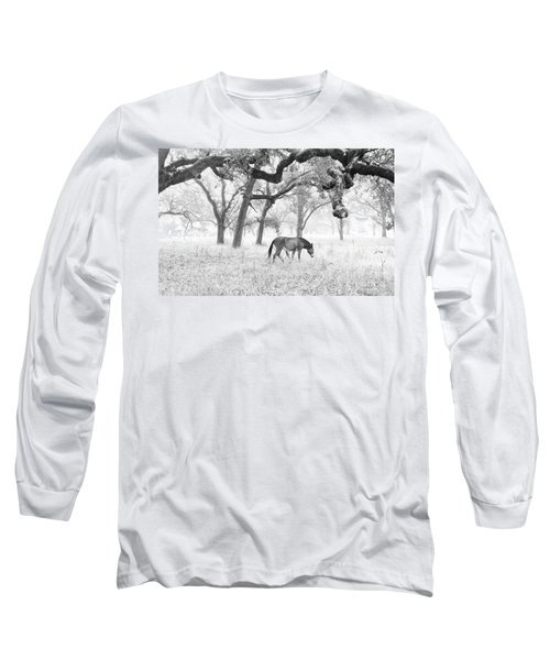 Horse In Foggy Field Of Oaks Long Sleeve T-Shirt by CML Brown