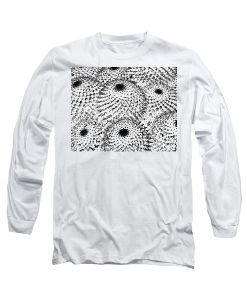 Long Sleeve T-Shirt featuring the photograph Invisible Cactus by Rebecca Margraf